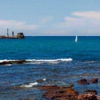 Livorno :: Alexander Richter