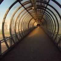 Туннель в параллельный мир (через МКАД в Подмосковье) :: Андрей Лукьянов