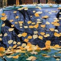 Осень... :: Валерия  Полещикова