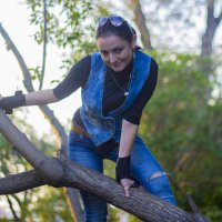 лазим по деревьям :: Владимир Иванец