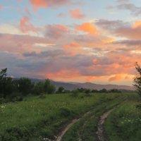 Дорога в ночь :: Нина Сигаева