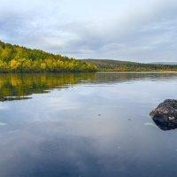 Лесное озеро :: олег
