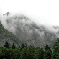 Горы.  Абхазия. :: Валерия  Полещикова