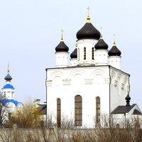 Свято-Успенский мужской монастырь. :: Борис Митрохин