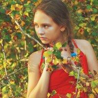 осенние ягодки 2 :: Viktoriya Bilan