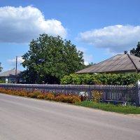 Молдавское село :: Nina Streapan