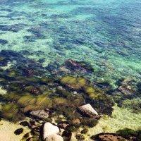 Красота приморского побережья.Находка. :: Евгений Подложнюк