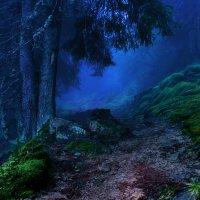 Дальше Будет Сказка!    Фото сделано Fatalv Argentum. http://fotokto.ru/id40755 :: Денис Быстров