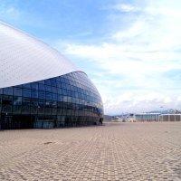 Стадион Большой :: Алексей Симаков