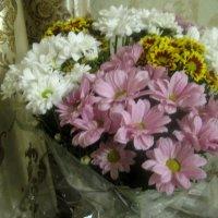 Праздничный букет из хризантем :: Елена Семигина