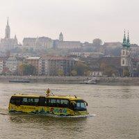 Речной автобус :: Павел Солопов
