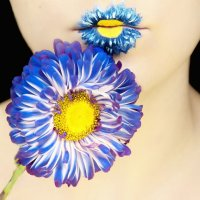 Цветы :: Мария Вергузова