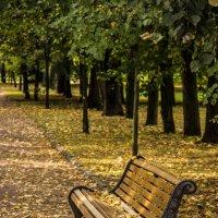Осенний парк :: Elena Ignatova