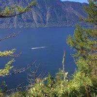 Вид на Телецкое озеро :: Геннадий Мельников