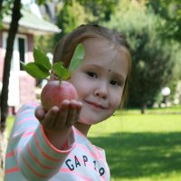 кому яблочек :: Марат Номад