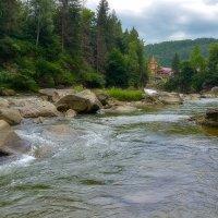 Река Прут :: Alexxxnyc