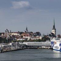 порт в Таллине :: ник. петрович земцов