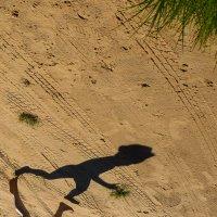 Лето убегает! Держи его! :: Natalia Dergacheva