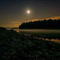 Звездная ночь :: Александр Чехановский