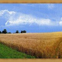Русское поле из под кисти художника :: Лидия (naum.lidiya)