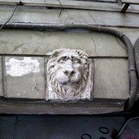 Питерские дворики... :: Александр Яковлев