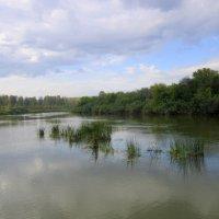 Река обмелела. :: Мила Бовкун