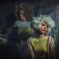 Цирк :: Любовь Борисова