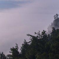 Утро :: Георгий Морозов