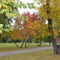 Осень :: Оксана Белова