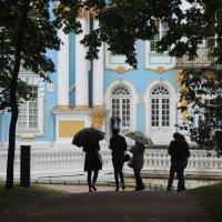 Прогулки под дождём :: Вера Моисеева
