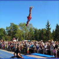 Кто над нами вверх ногами :: Андрей Заломленков