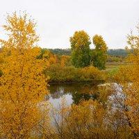 Осень :: Виктор Бондаренко