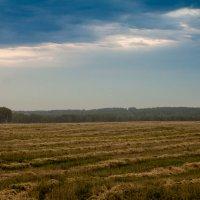 окрестности села :: Евгения Тарасова