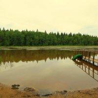 Озеро :: Валентина Жукова