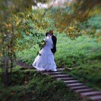 Осенние свадьбы :: Борис Гуревич