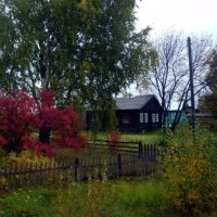 Осень в деревне. :: Николай Туркин