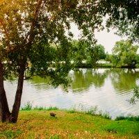 Пейзаж :: Альбинка Касимова