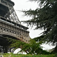 Парижанка :: Galina Belugina