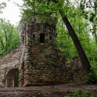 Руина :: Константин Бобинский