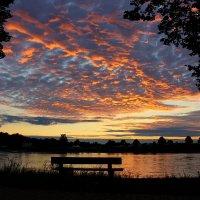 Закат над Рейном и одинокая скамейка. :: Юрий. Шмаков