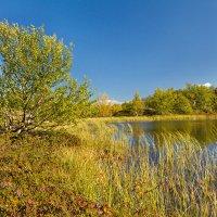 Природа Кольского полуострова :: Oleg Akulinushkin