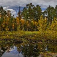 Осеннее отражение :: mr. mulla