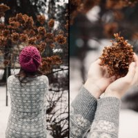 Зимние цветы :: Илья Кантемиров
