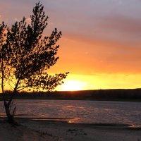 закат на  реке Ахтубе :: Надежда