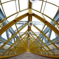 мост :: Дарья Орехова