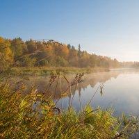 Северная Осень!) :: Лариса Сафонова