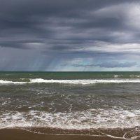 где-то далеко идут грибные дожди.. :: Ирина Пантелеева