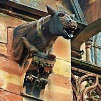 Горгулья Страсбургского собора :: Александр Корчемный
