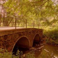 Старинный мост :: Ирина Олехнович