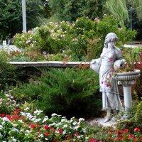 В парке среди цветов... :: Тамара (st.tamara)